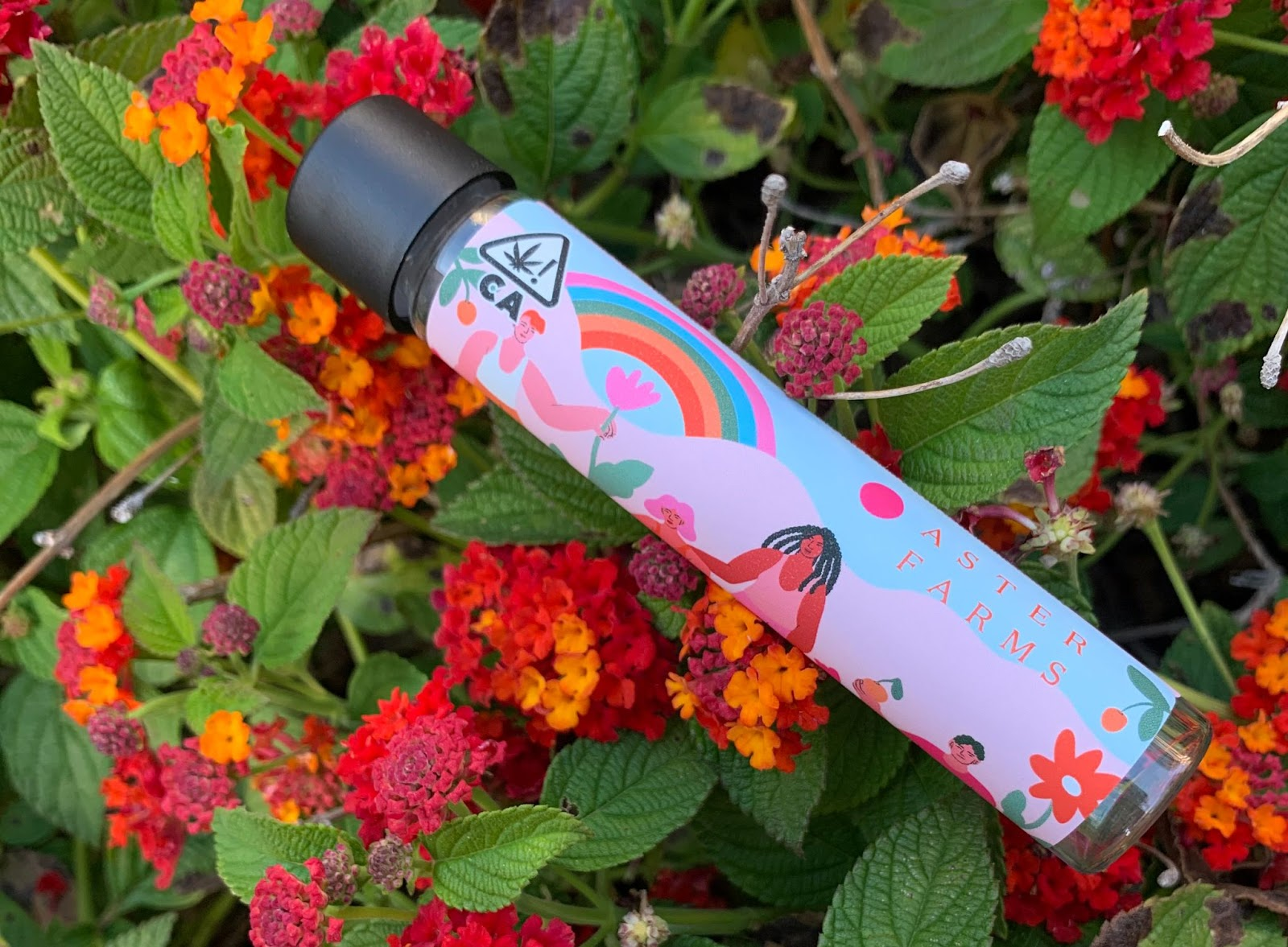 6 new weed products to try from Rolling Stone, Aster Farms, Laganja Estranja, and more